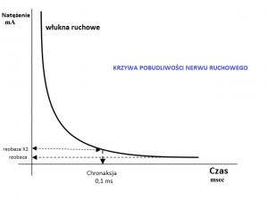 Krzywa pobudliwości dla nerwu ruchowego